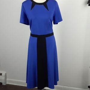 ELOQUII plus 18 dress midi short sleeves blue